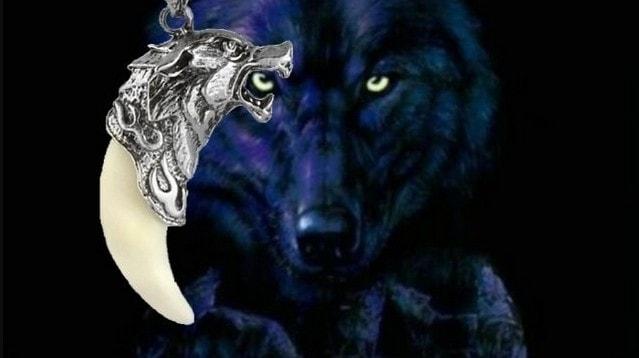 obereg-amulet-volka-klyk-kolovrat-znachenie