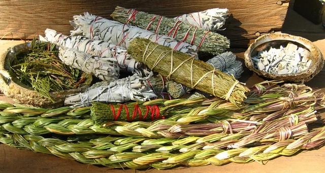 travy-oberegajushhie-dlja-doma-i-semi