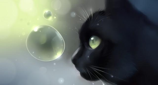 Белые и черные кошки в магии. Как магия кошек помогает человеку? Почему нельзя смотреть котам в глаза?