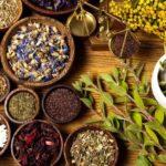 Магические травы и растения