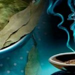 Лавровый лист в магии – обряды и ритуалы