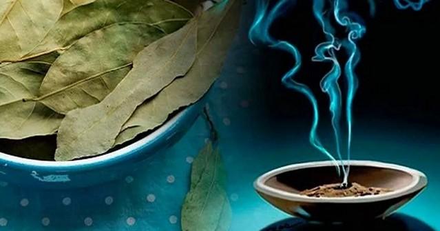 magija-lavrovogo-lista-na-dengi-zagovory