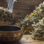 Полынь в магических ритуалах: для чего используется